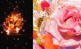 Brulure de Rose 13 Eau de Parfum 50 ml_