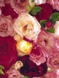 La Rose de Rosine 100 ML EDP_