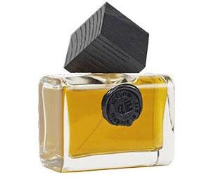 Cuir Erindil Eau de Parfum 100 ml